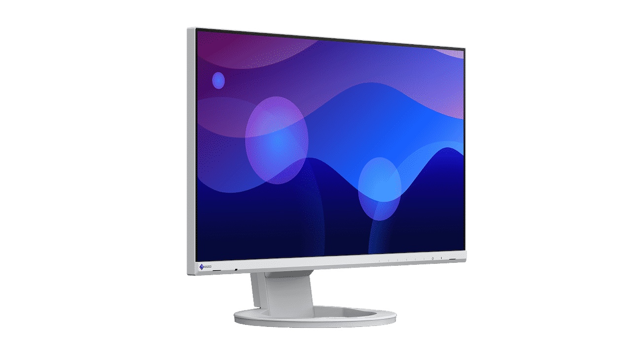Monitor per smart working? Eizo Flexscan EV2480